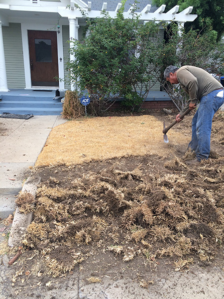 turf-removal